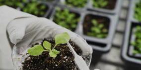 土壤及沉积物检测