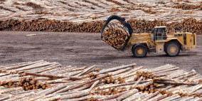 EUTR欧盟木材法规